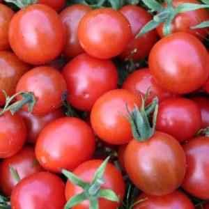 Tomates cerises ronde