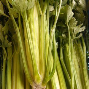Celeri blanc