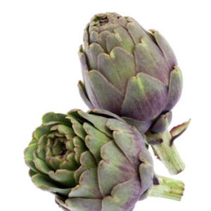 artichaut violet 2